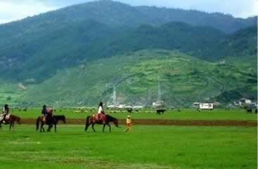 香格里拉牧场